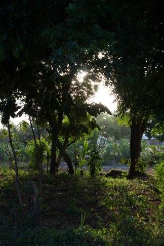 Ville de Pangani en Tanzani - Afrique