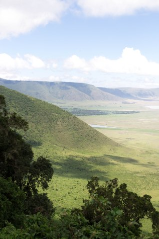 Serengeti National Park, Ngorongoro conservation area - Tanzania