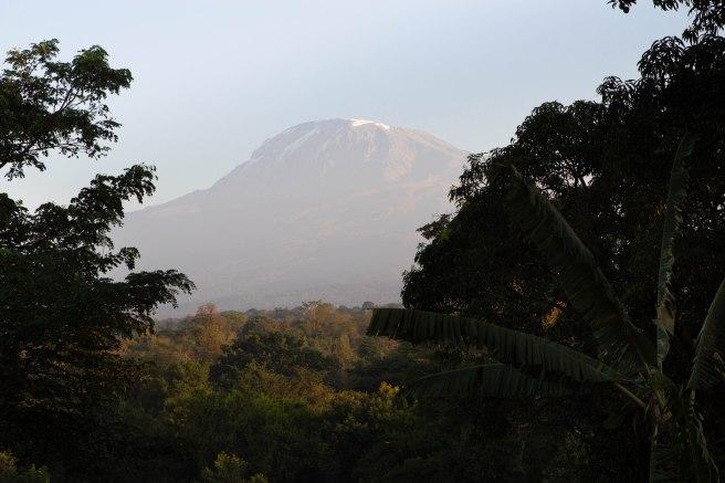 Ville de Moshi en Tanzanie - Afrique
