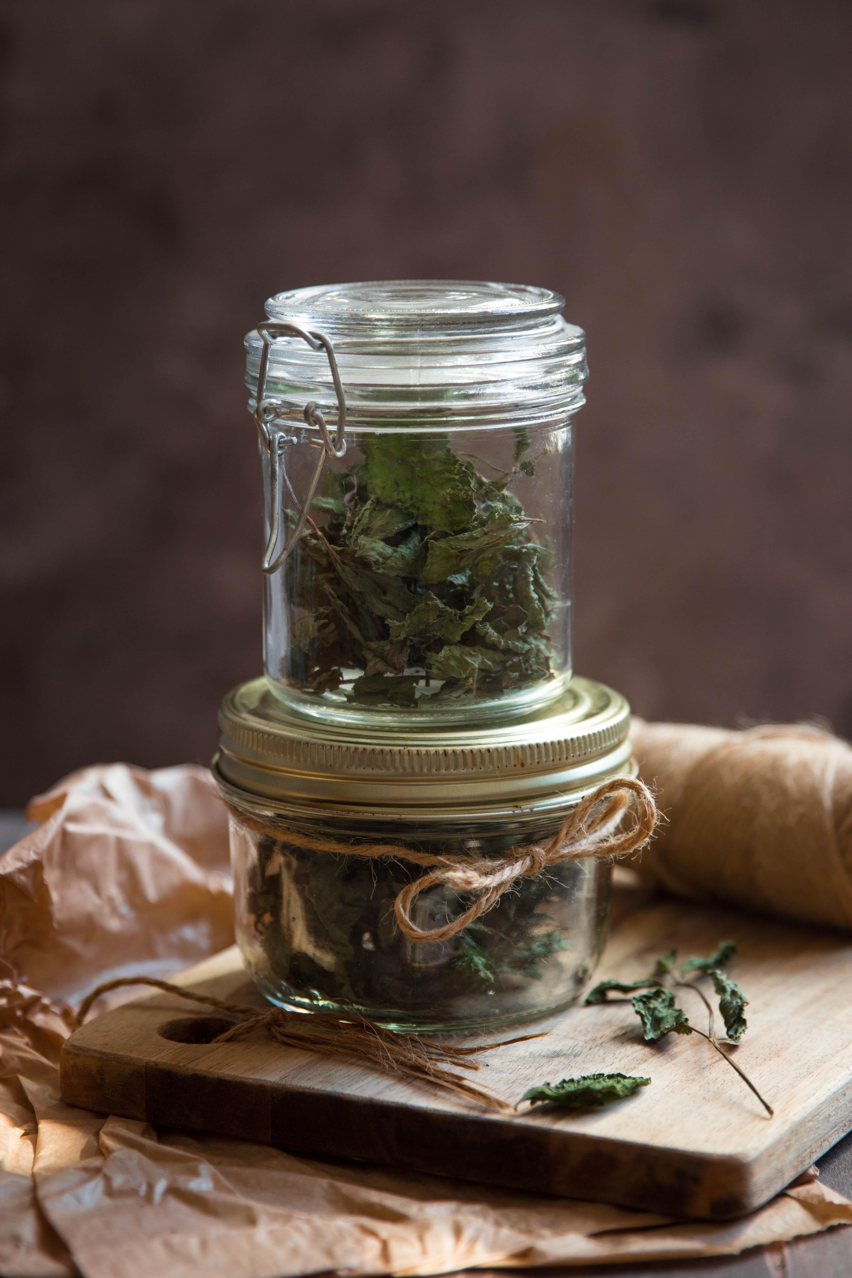 Recycler ses herbes aromatiques - Sécher de la menthe à infuser - photography