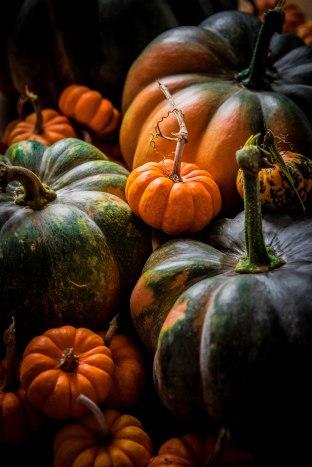 Courges d'automne - Portfolio Madamcadamia photography