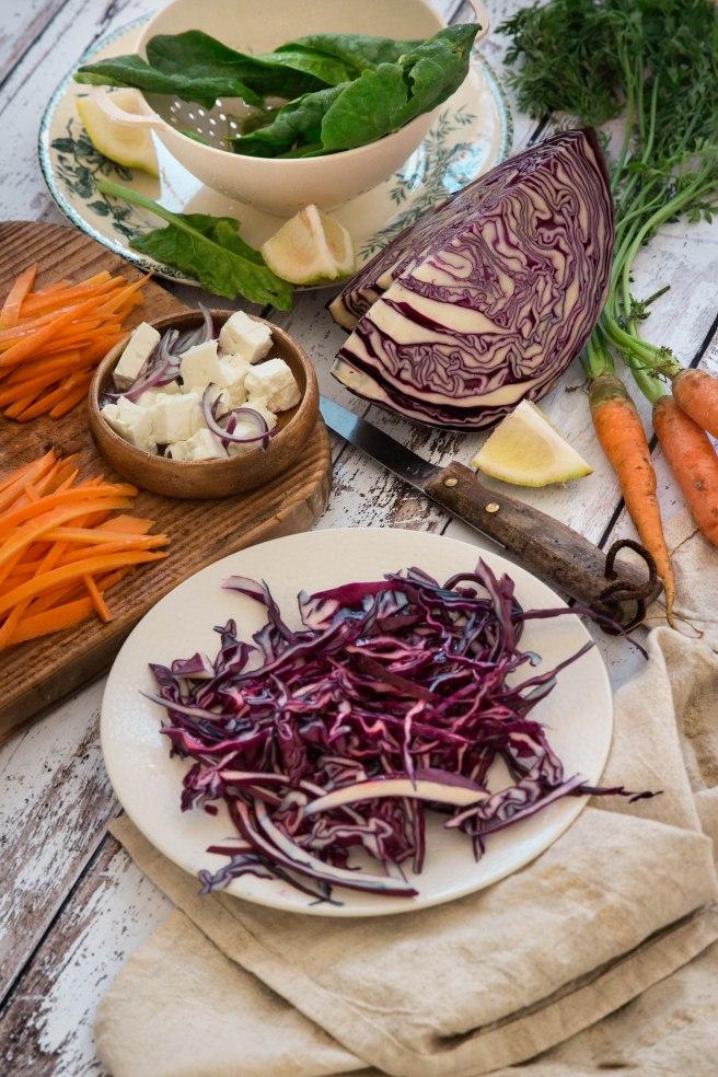 Rouleaux de printemps végétariens au chou rouge - spring rolls photography