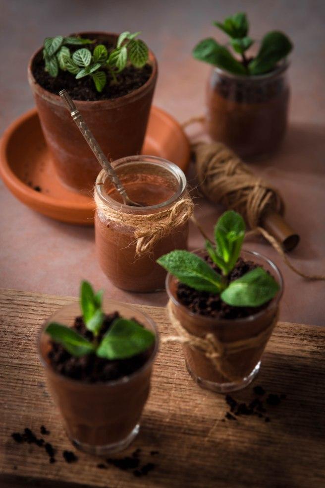 Mousse au chocolat trompe l'œil comme une plante en jardinière (spécial Pâques) - photography