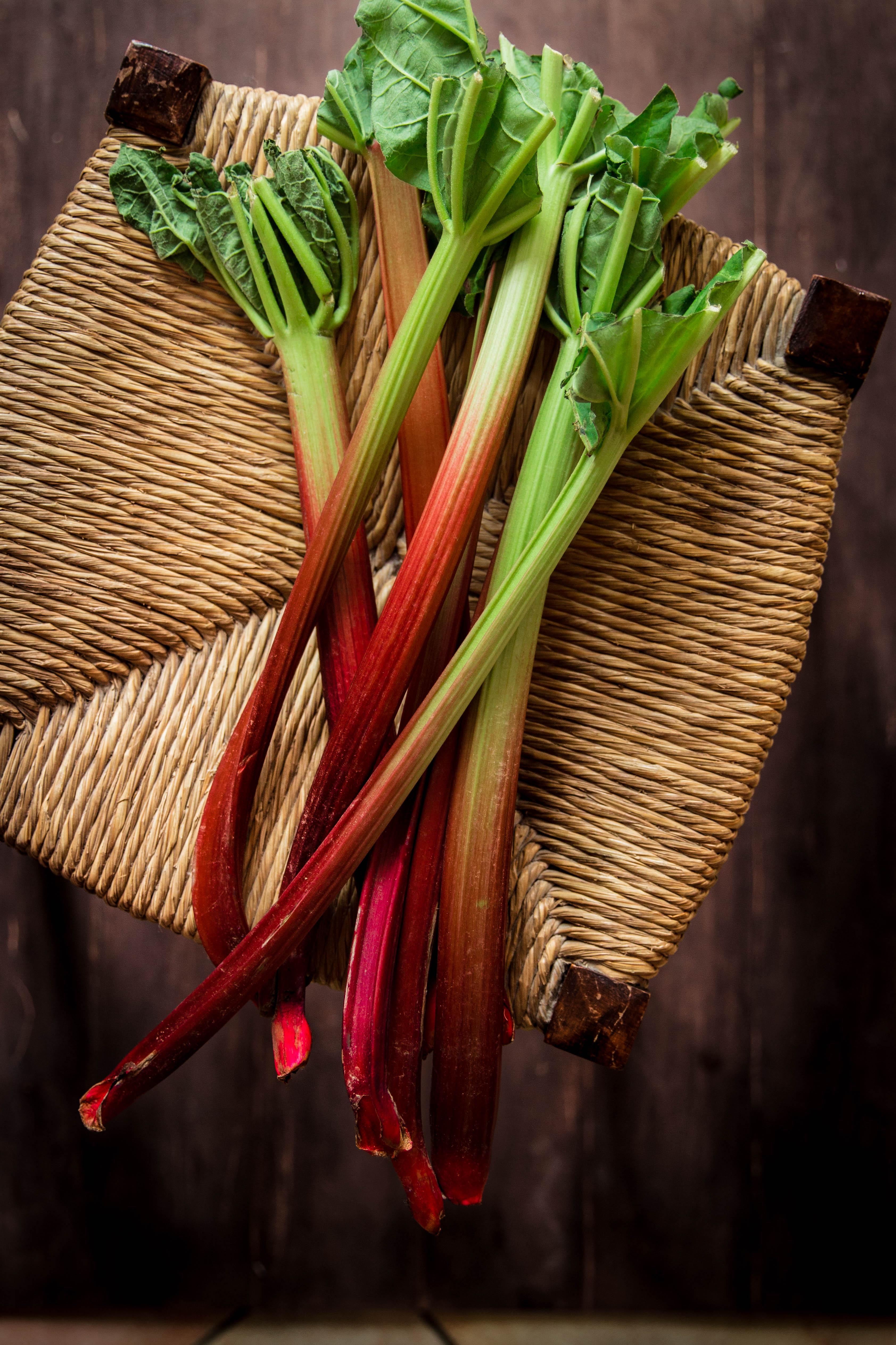 Compote maison de fraises et rhubarbe - photography